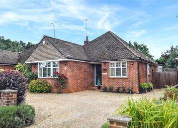 Thumbnail 3 bed detached bungalow for sale in Maple Drive, Crowthorne, Berkshire