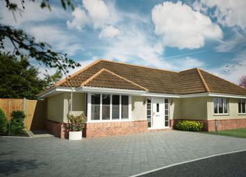 Thumbnail 3 bed detached bungalow for sale in Gainsford Avenue, Clacton-On-Sea