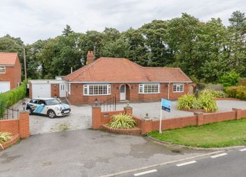 Thumbnail 4 bed detached bungalow to rent in Wheldrake Lane, Crockey Hill, York