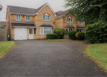 Thumbnail 4 bedroom detached house to rent in Petunia Close, Leicester