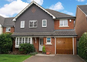 Thumbnail 4 bed property to rent in Maslen Road, St.Albans