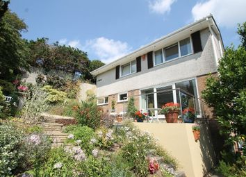 Thumbnail 4 bed detached house for sale in Wellsbourne Park, Mannamead, Plymouth