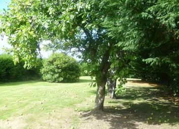 Thumbnail Land for sale in Saltburn, Invergordon