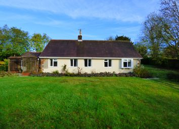 Thumbnail 2 bed detached bungalow to rent in Iwerne Minster, Blandford Forum