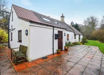 Thumbnail 4 bed bungalow for sale in Acklington, Felton, Northumberland