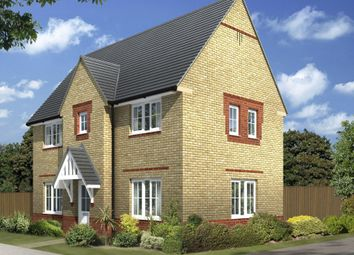 "Thumbnail 3 bed detached house for sale in ""Morpeth"" at Arnold Drive, Corby"