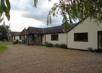 Thumbnail 3 bed detached bungalow to rent in Hobbles Green, Cowlinge