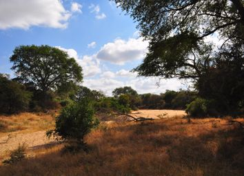Thumbnail Land for sale in Moditlo Nature Reserve, Hoedspruit, Limpopo Province, South Africa