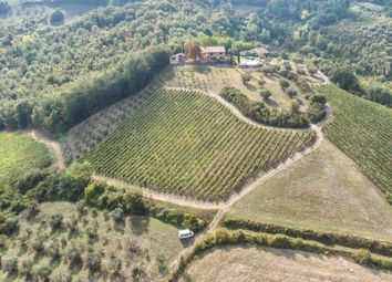 Thumbnail Farm for sale in Siena, Casole D'elsa, Siena, Tuscany, Italy