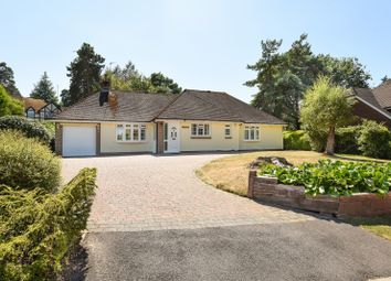 Thumbnail 3 bed detached bungalow to rent in Chestnut Close, Storrington