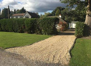 Thumbnail 3 bed detached bungalow to rent in Stafford Lake, Bisley, Surrey