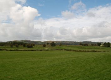 Thumbnail Land for sale in Meadow & Pasture Land Underbarrow, Thorns Lane, Underbarrow, Kendal, Cumbria