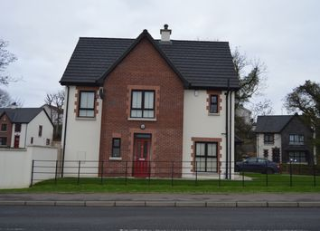 Thumbnail 3 bedroom semi-detached house for sale in Mill Meadows, Newry