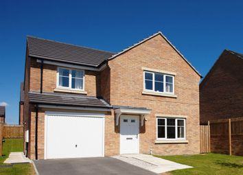 "Thumbnail 4 bedroom detached house for sale in ""The Roseberry"" at Castle Road, Cottingham"