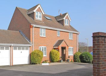 Moneyer Road, Andover SP10. 6 bed detached house for sale