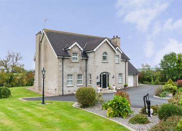 Thumbnail 4 bed detached house for sale in Old Mill Road, Scarva, Craigavon, County Down