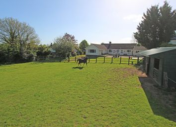 Thumbnail 4 bed detached bungalow for sale in Luton, Payhembury