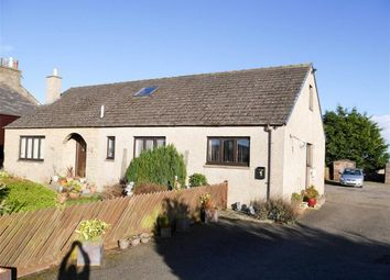 Thumbnail 4 bedroom bungalow for sale in Westhall Terrace, Duntrune, Dundee