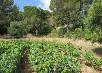 Thumbnail 4 bed property for sale in Ramatuelle, Var, France
