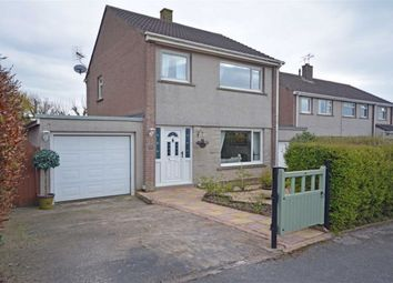 Thumbnail 3 bed detached house for sale in Bassenthwaite Close, Millom, Cumbria