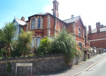 Thumbnail 2 bed flat to rent in Torquay Road, Newton Abbot