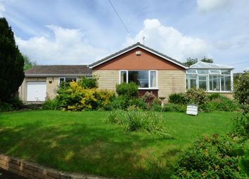 Thumbnail 3 bed detached bungalow for sale in Back Street, East Stour