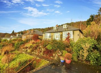 Thumbnail 4 bed bungalow for sale in Hill Side East, Rothbury, Northumberland