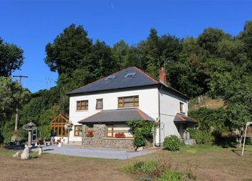 Thumbnail 6 bed farm for sale in Stepaside, Narberth