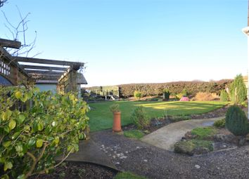 Thumbnail 4 bed detached house for sale in Homefield, Shaftesbury