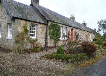 Thumbnail 3 bed cottage to rent in West Loan, St Andrews, Fife