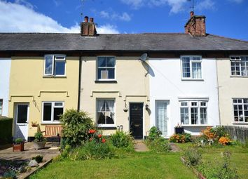 Thumbnail 2 bedroom terraced house to rent in Barrells Down Road, Bishops Stortford, Herts