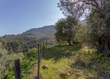 Thumbnail 3 bed property for sale in Deià, Spain