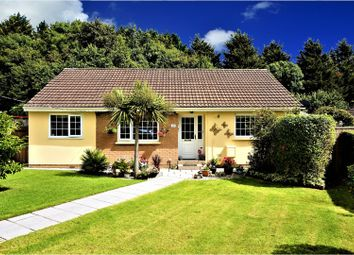 Thumbnail 3 bed detached bungalow for sale in Darran Close, Kingsteignton, Newton Abbot