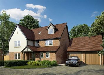 Thumbnail 6 bed detached house for sale in Millers View, Much Hadham, Hertfordshire