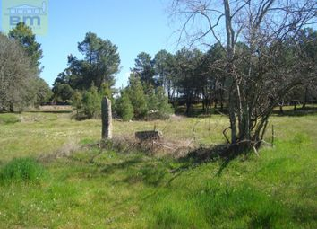 Thumbnail 1 bed country house for sale in 6000-030 Cafede, Portugal