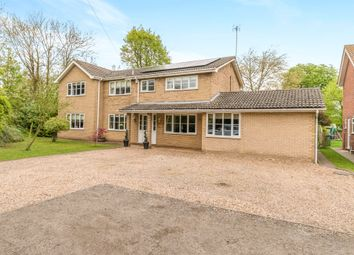 Thumbnail 5 bed detached house for sale in West Elloe Avenue, Spalding