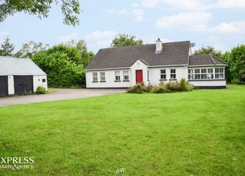 Thumbnail 5 bed detached bungalow for sale in Race Road, Portglenone, Ballymena, County Antrim