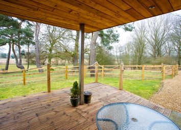 Thumbnail 4 bed detached house for sale in Norfolk, Northwold, Near Thetford Lifestyle, Equestrian, Business