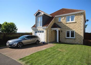Thumbnail 4 bed detached house for sale in 20, Walter Lumsden Court, Freuchie, Fife