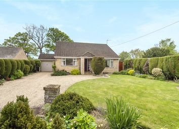 Thumbnail 4 bedroom detached bungalow for sale in Leigh, Sherborne