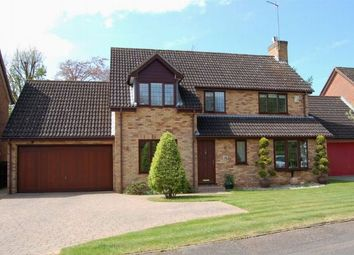 Thumbnail 4 bedroom detached house for sale in Pine Copse Close, Duston, Northampton
