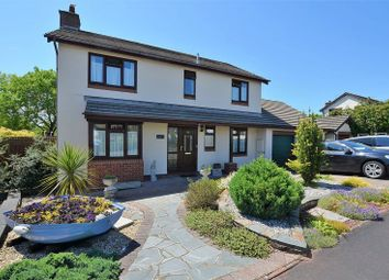 Thumbnail 4 bed property for sale in Steed Close, Hookhills, Paignton.