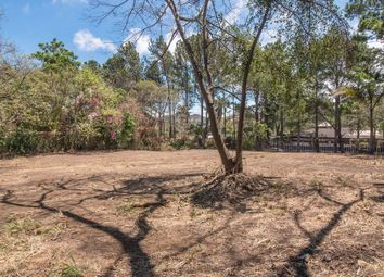 Thumbnail Land for sale in Salitral, San Jose, Costa Rica
