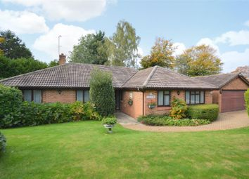 Thumbnail 4 bedroom detached bungalow for sale in Summerlay Close, Kingswood, Tadworth