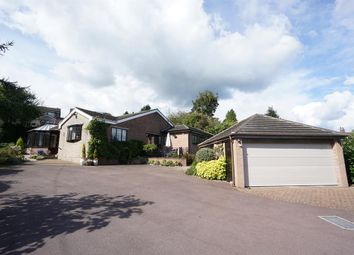 Thumbnail 3 bed detached bungalow for sale in Bland Lane, Wadsley, Sheffield