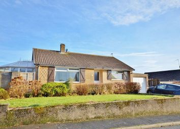 Thumbnail 2 bed detached bungalow for sale in Whitestiles, Seaton, Workington