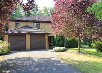 Thumbnail 5 bed detached house to rent in Milner Drive, Cobham, Surrey