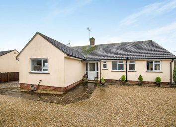 Thumbnail 3 bedroom detached bungalow for sale in Greylands, Cattistock, Dorchester