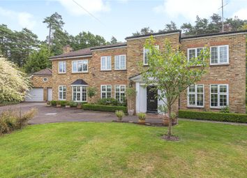 Thumbnail 4 bedroom detached house to rent in Fir Tree Close, Ascot, Berkshire