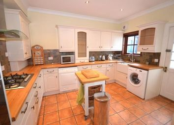 Thumbnail 3 bed semi-detached house to rent in Queen Street, Craigie, Perth